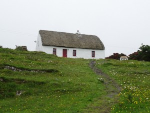 Thatched roof houses that used to be popular on the island