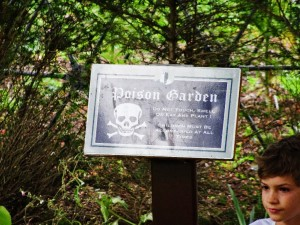 Poison Garden, a la Harry Potter